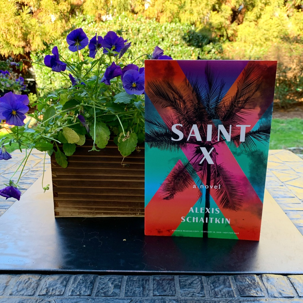 Photo of the book Saint X with violets