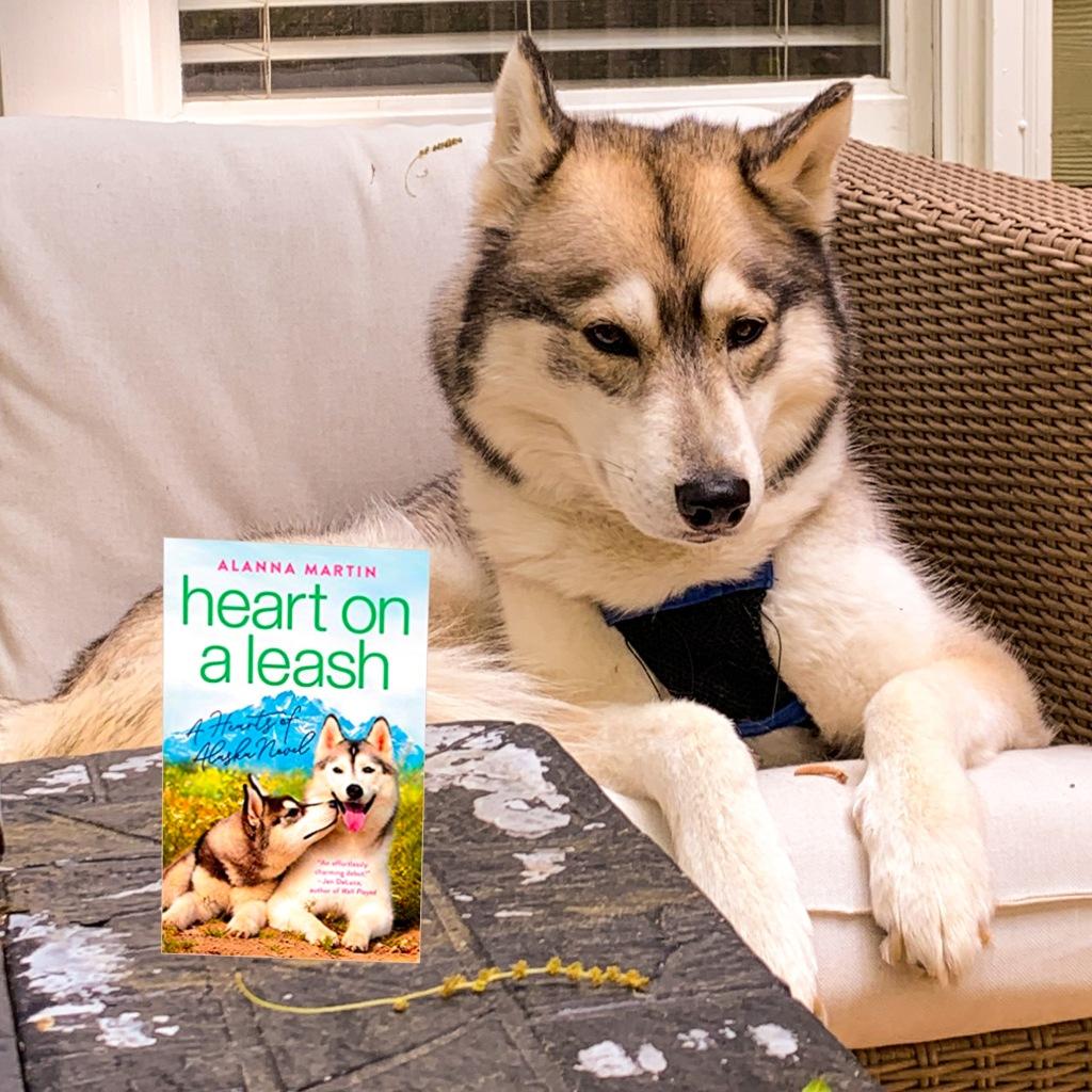 Photo of Heart on a Leash novel with a Siberian Husky